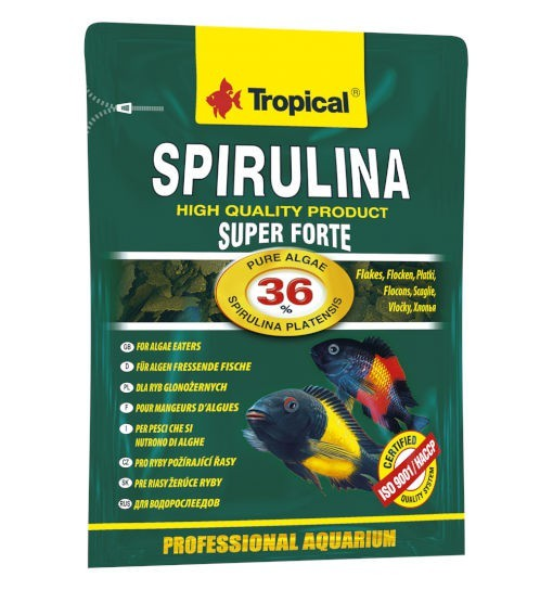 Tropical Super spirulina forte 36% - pokarm roślinny w formie płatków