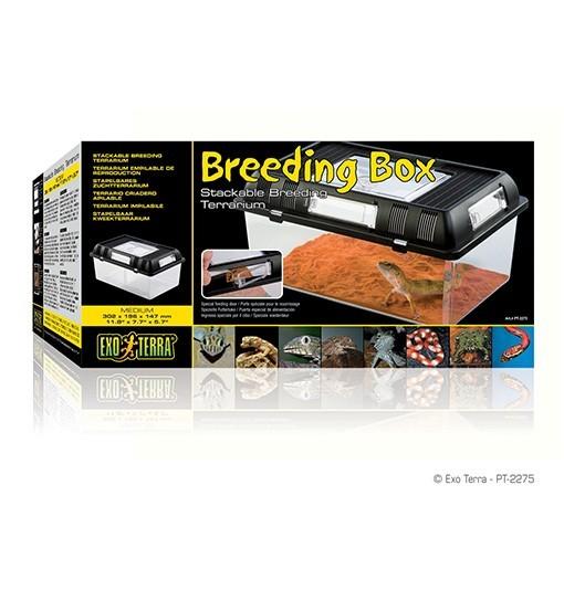 Exo-Terra Breeding Box M - box hodowlany (PT2275)