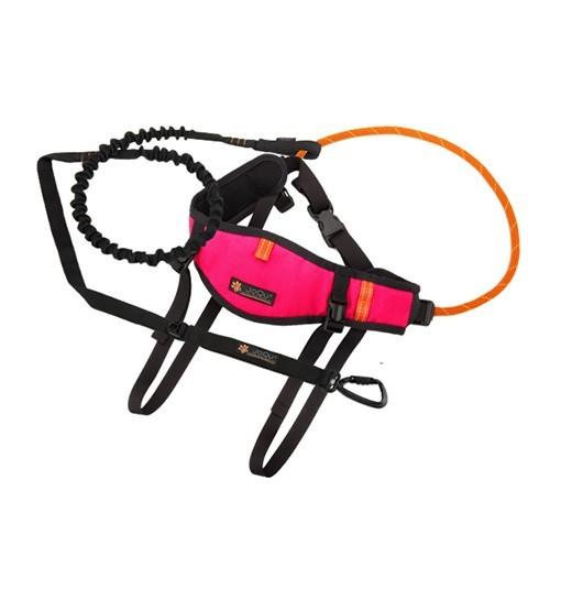 JoQu Zestaw Light Canicross Belt PLUS Pink - pas do biegania odciążający odcinek lędźwiowy + Rope PLUS