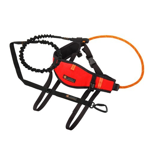 JoQu Zestaw Light Canicross Belt PLUS Red - pas do biegania odciążający odcinek lędźwiowy + Rope PLUS