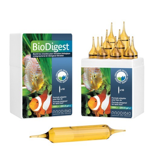 Prodibio Biodigest Pro - bakterie