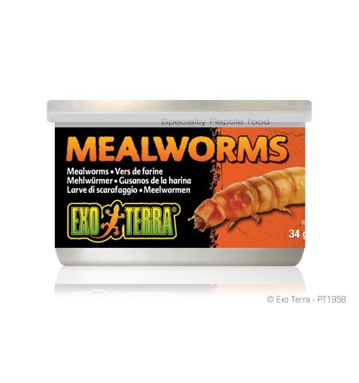 Exo-Terra Pokarm w puszce - mączniki Mealworms