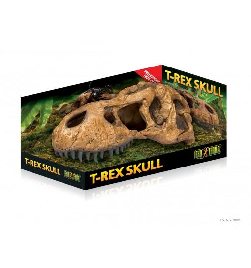 Exo-Terra Czaszka T-Rexa Dinozaura T-Rex Skull (PT2859)