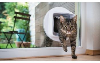 Drzwi dla kota z systemem identyfikacji